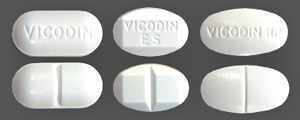 Vincodin1.jpg